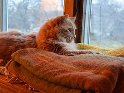 Jak zwiększyć izolacyjność akustyczną okien?